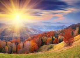 Forest_Autumn